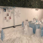 Fifth Birthday Party - Frozen Theme
